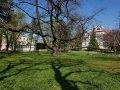 Park im. M. Klepacza należący do Politechniki Łódzkiej będzie ogrodzony, foto. Jacek Szabela